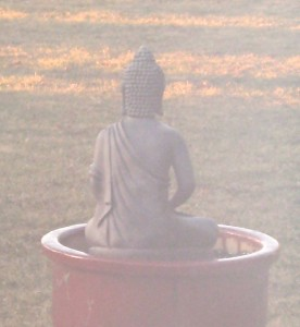 Buddha sweeping away the veils of illusion, breathing in new energy... Photo by Jan Ketchel