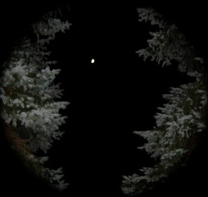 The portal presents itself... - Photo by Jan Ketchel