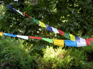 In breaking routine, I got to see the Tibetan prayer flags flying, spreading their messages to the world... - Photo by Jan Ketchel