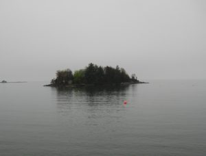 Nothing but a little island grounded in the vast everything... - Photo by Jan Ketchel